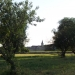 Vue de l'église de Poncey